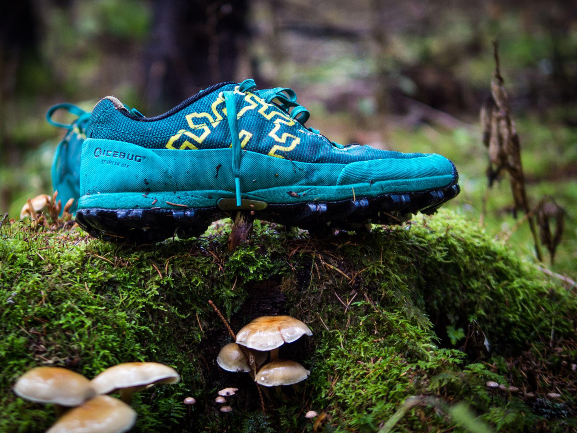 Passar vid sidan av vägen från stig till obanat. Enligt mig är Icebug  Spirit4 OLX hösten vinterns trevligaste sko. För mig fungerar den till det  mesta vid ... 7182c1b773695